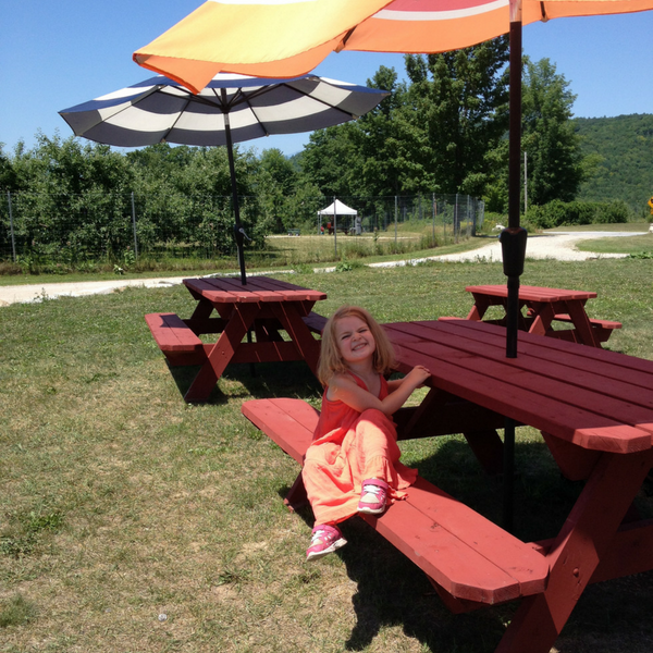 Plenty of shaded seating for enjoying berries or pizza at Pietree Orchard